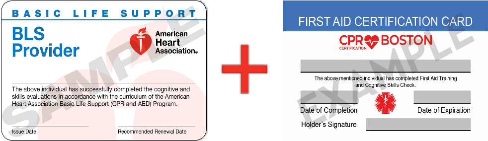 Sample CPR + First Aid Card